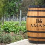 amani-12