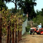 soil-preparation