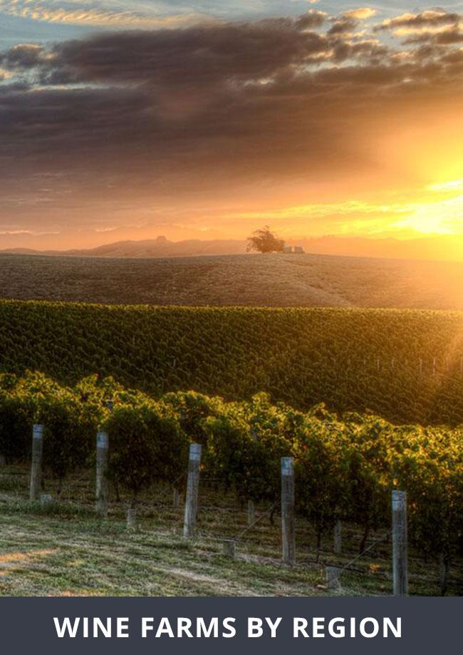 wine-farms-by-region