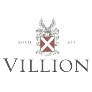villion_logo_web