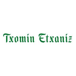 Txomin Square Logo