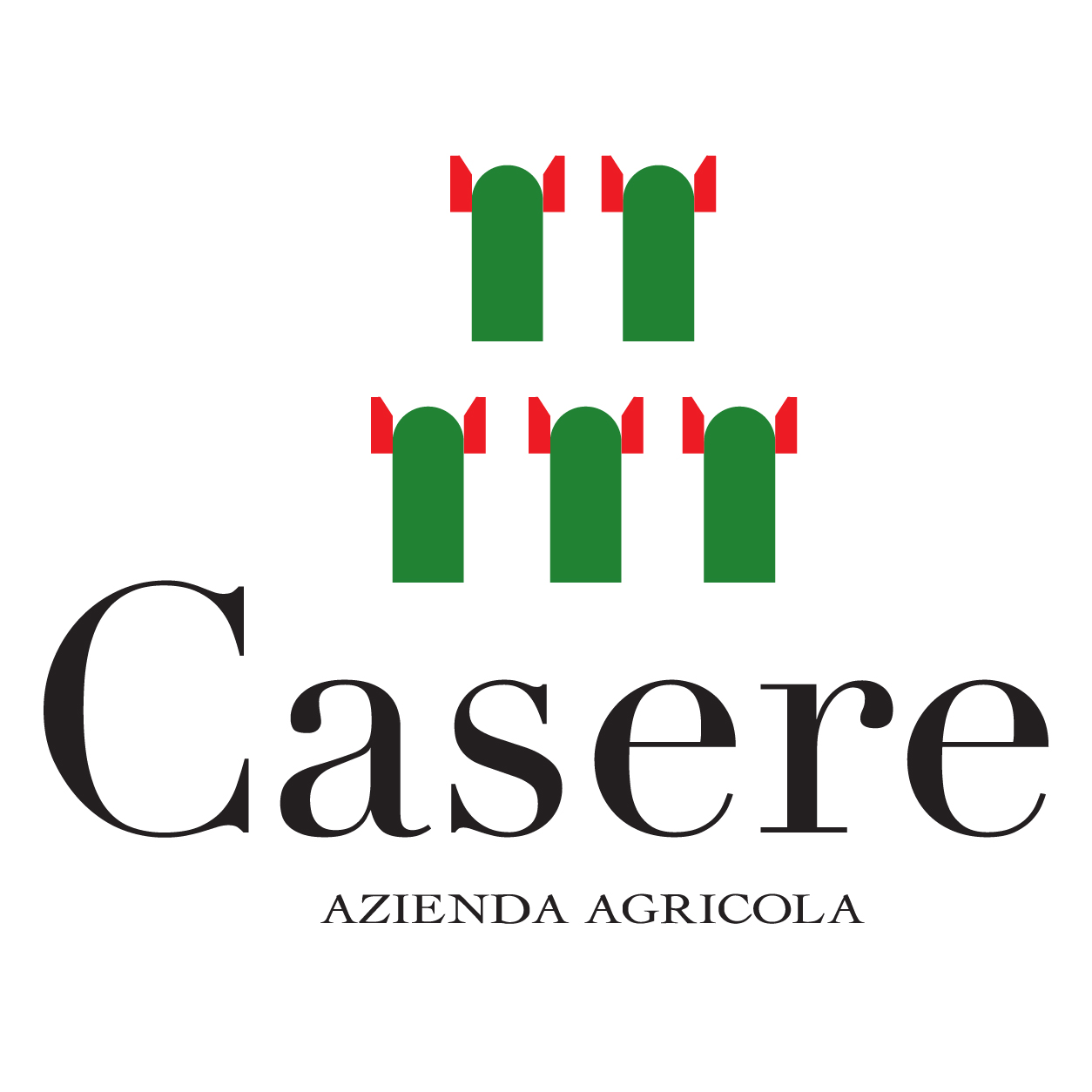 Casere Logo Size-01